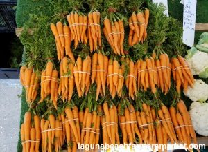organic vegetables laguna niguel farmers market carrots martinez farms